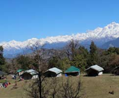 Chopta Package