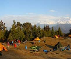 Honeymoon Tour To Chopta