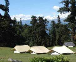 Chopta Honeymoon Tour Package